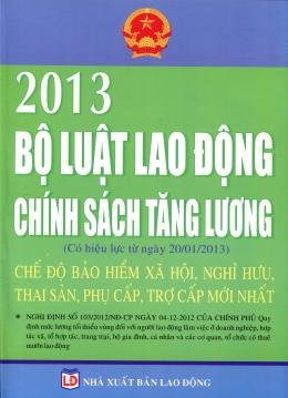 Bộ Luật Lao Động 2013 - Chính Sách Tăng Lương, Chế Độ Bảo Hiểm Xã Hội, Nghỉ Hưu, Thai Sản, Phụ Cấp, Trợ Cấp Mới Nhất