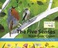The Five Senses - Năm Giác Quan (Trình Độ 1 - Tập 5) - Kèm 1 CD
