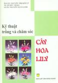 Kỹ Thuật Trồng Và Chăm Sóc Cây Hoa Lily
