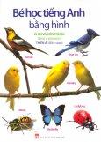 Bé Học Tiếng Anh Bằng Hình - Chim Và Côn Trùng