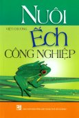 Nuôi Ếch Công Nghiệp