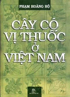 Cây Có Vị Thuốc Ở Việt Nam