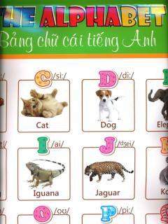 Poster Bảng Chữ Cái Tiếng Anh