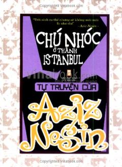 Chú Nhóc Ở Thành Istanbul - Tự Truyện Của Aziz Nesin
