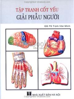 Tập Tranh Cốt  Yếu Giải Phẫu Người