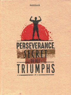 Notebook - Perseverance, Secret Of All Triumphs