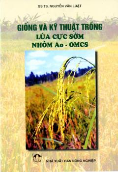 Giống Và Kỹ Thuật Trồng Lúa Cực Sớm Nhóm Ao - OMCS