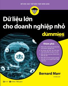 Dữ Liệu Lớn Cho Doanh Nghiệp Nhỏ For Dummies