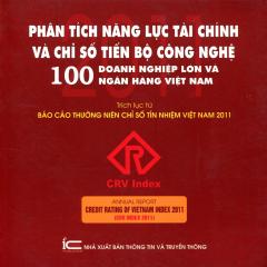 Phân Tích Năng Lực Tài Chính Và Chỉ Số Tiến Bộ Công Nghệ 100 Doanh Nghiệp Lớn Và Ngân Hàng Việt Nam