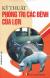 Kỹ Thuật Phòng Trị Các Bệnh Của Lợn
